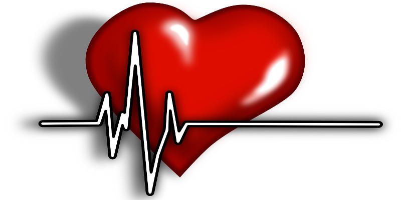 Holter Rhythm Heart