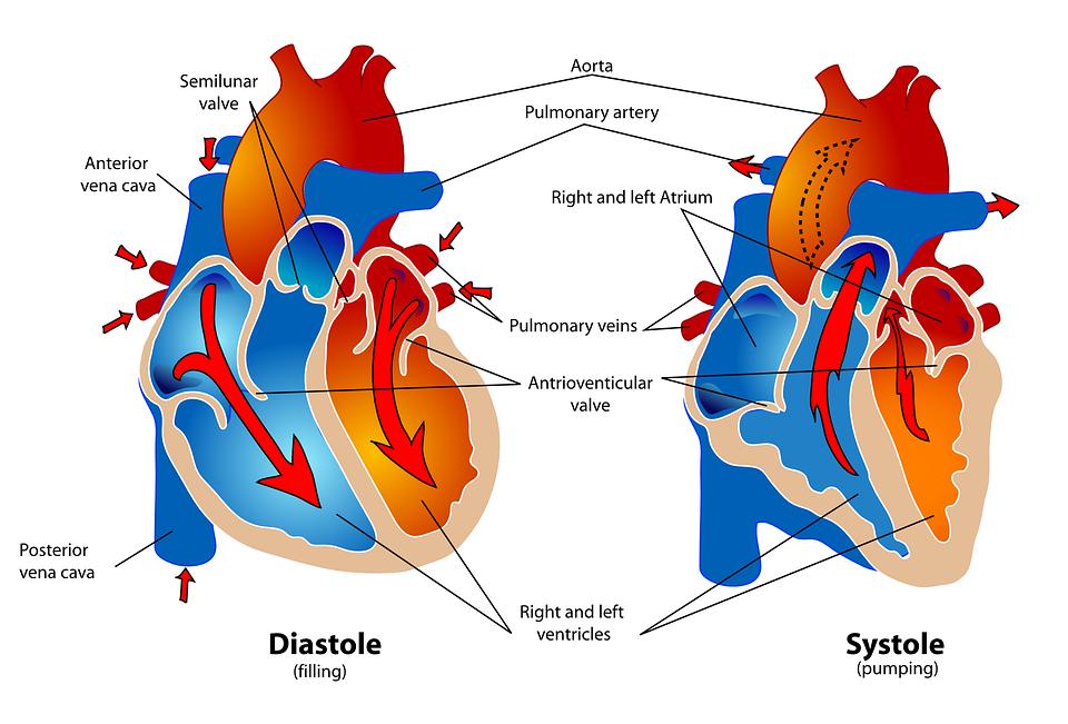 πνευμονική εμβολή καρδιολογικά προβλήματα Παναγιωτόπουλος